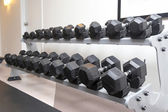 Dumb bells lined up in a fitness studio — Stock Photo