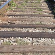 Macro railway — Stock Photo
