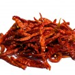 Dry red chili pepper isolated — Stock Photo