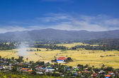 Small village and Rice Field in Chiangmai — Stock Photo