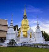 Gold pagoda at Wat Suan Dok in Chiang Mai, Thailand — Stock Photo
