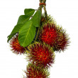 Rambutwith green leaf — Foto Stock #40759875