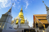 Wat Suan Dok temple in Chiang Mai, Thailand — Stock Photo