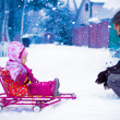Dad rolls his little daughter on a sled — Stock Photo
