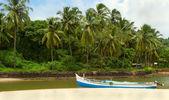 Fishing boats in tropical river. Goa — Stock Photo