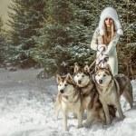 Fashion portrait of beautiful woman with three dogs — Stock Photo #18977385