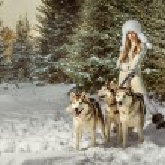 Fashion portrait of beautiful woman with three dogs — Stock Photo #18977429