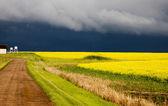 Step burza chmury — Zdjęcie stockowe