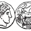 Постер, плакат: Ancient Macedonian Gold Coin vintage engraving