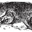 Common mole rat or Cryptomys hottentotus vintage engraving — 图库矢量图片