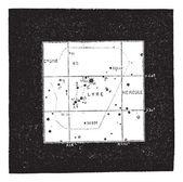 Lyra Constellation, vintage engraving — Stock Vector