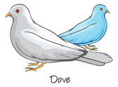Dove, Color Illustration — Stok Vektör