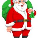 Santa Claus, illustration — Stock Vector #17156101