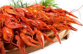 Boiled crawfish on the wooden plate — Stock Photo
