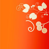 Orange red Greeting card — Stock Photo