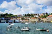 Veel recreatie boten op de rivier douro — Stockfoto