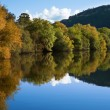 Riverbank trees and reflection — Stock Photo