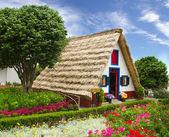 典型的纪念花卉店屋马德拉 — 图库照片
