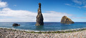 фаллическая скала в океане, мадейра — Стоковое фото
