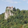 Bled Castle on the cliff, Slovenia — Stock Photo #13175291