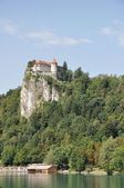 Bled Castle on the cliff, Slovenia — Stock Photo