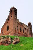 Castle in Radzyn Chelminski, Poland — Stockfoto