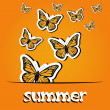 Stock Photo: Pretty summer background with butterfly, vector