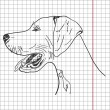 Stock Photo: Drawing of dog (English pointer), vector