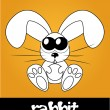 Cute rabbit with big eyes, vector illustration — Stock Photo #22993006