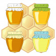 Bee's honeycomb and jars of honey, vector illustration — Stock Photo
