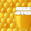 Bee's honeycomb and jar of honey, vector illustration — Stok fotoğraf