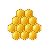 Bee's honeycomb full of honey, vector illustration — Stock Photo