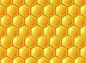 Bee's honeycomb, seamless pattern , vector illustration — 图库照片