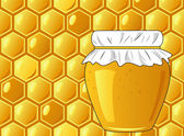 Bee's honeycomb and jar of honey, vector illustration — Stock Photo