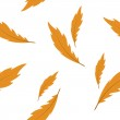 Vector background with feathers , seamless pattern — Stock Photo