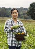 Dojrzałe kobiety stały z warzyw koszyk w polu — Zdjęcie stockowe