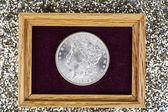 Fine Silver Dollar in Jewelry Box — Fotografia Stock