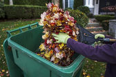 Cleaning Front Yard during Autumn — Stock Photo