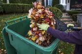 Sonbahar sırasında ön bahçesinde temizlik — Stok fotoğraf