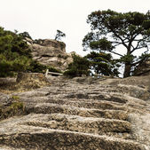 Stone Staircase with platform — Stock Photo