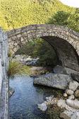 Asian Bridge with Stream — Stock Photo
