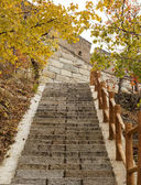 Stairway to Great Wall during Autumn — Stock Photo