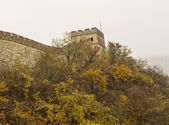Great Wall in Autumn Season — Photo