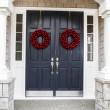 Holiday Home Door — Stock Photo #16010071