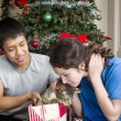 Holiday Kitty Cat — Stock Photo #18337721