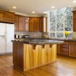Large Daylight Kitchen — Stock Photo #18739995