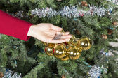 Undressing the Christmas Tree — Stock Photo
