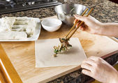 Making Asian Spring rolls for Dinner — Stock Photo