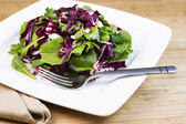 Fresh Salad and herbs on Plate with Fork and Napkin — Stock Photo