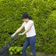 Mature Woman trying to start lawnmower with pull cord — Stock Photo #26184261